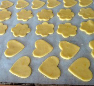 plaque-biscuit